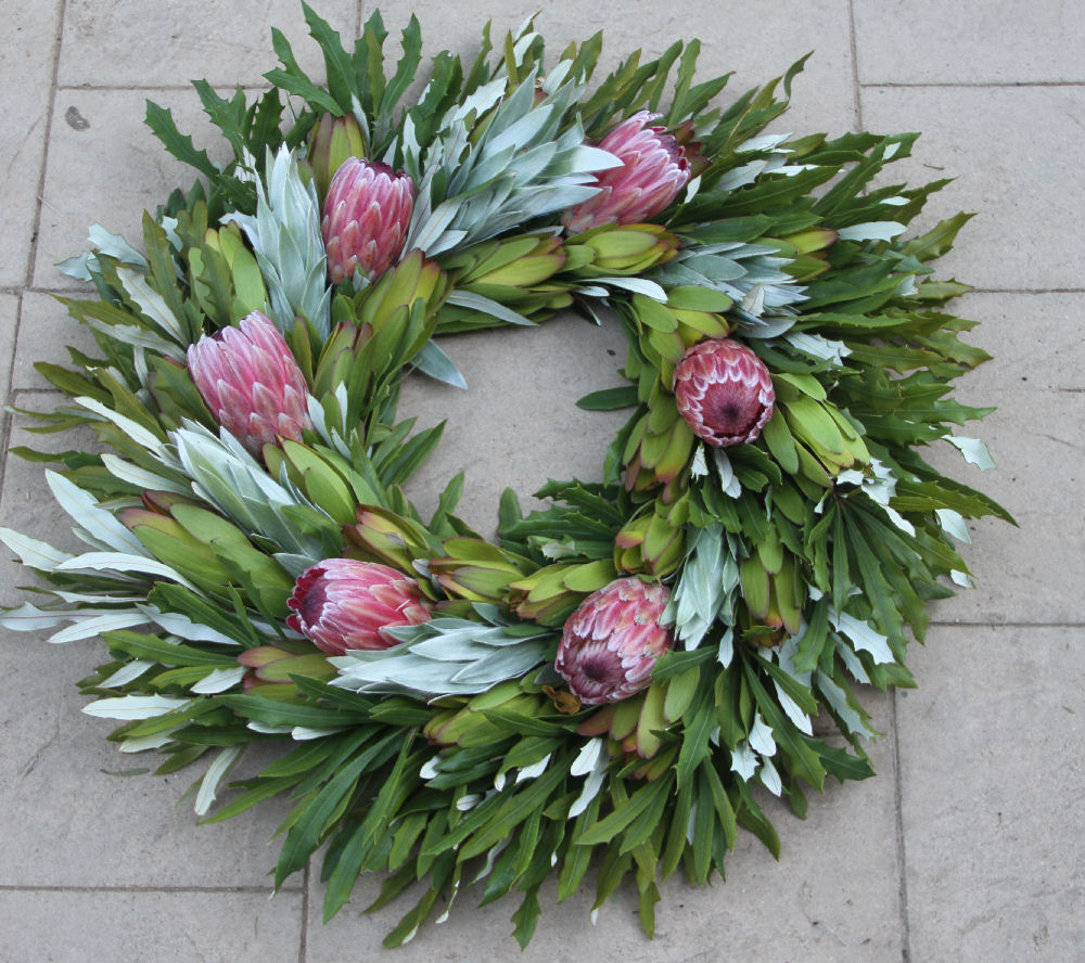 INTEGRIFOLIA SILVER PINK ICE WREATH