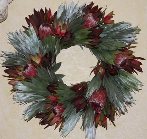 FRESH MORE SILVER TREE WITH PINK ICE, & RED PROTEA WREATH
