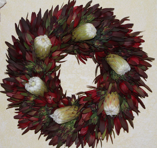 RED SAFARI & WHITE PROTEA WREATH